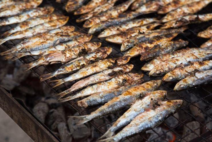 sardinhas na brasa na festa dos santos populares - nacionalidade portuguesa